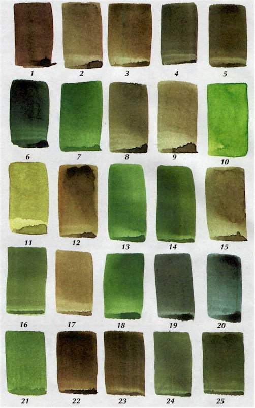 Color Mixing For Artists Mixing Green Painting With Watercolor
