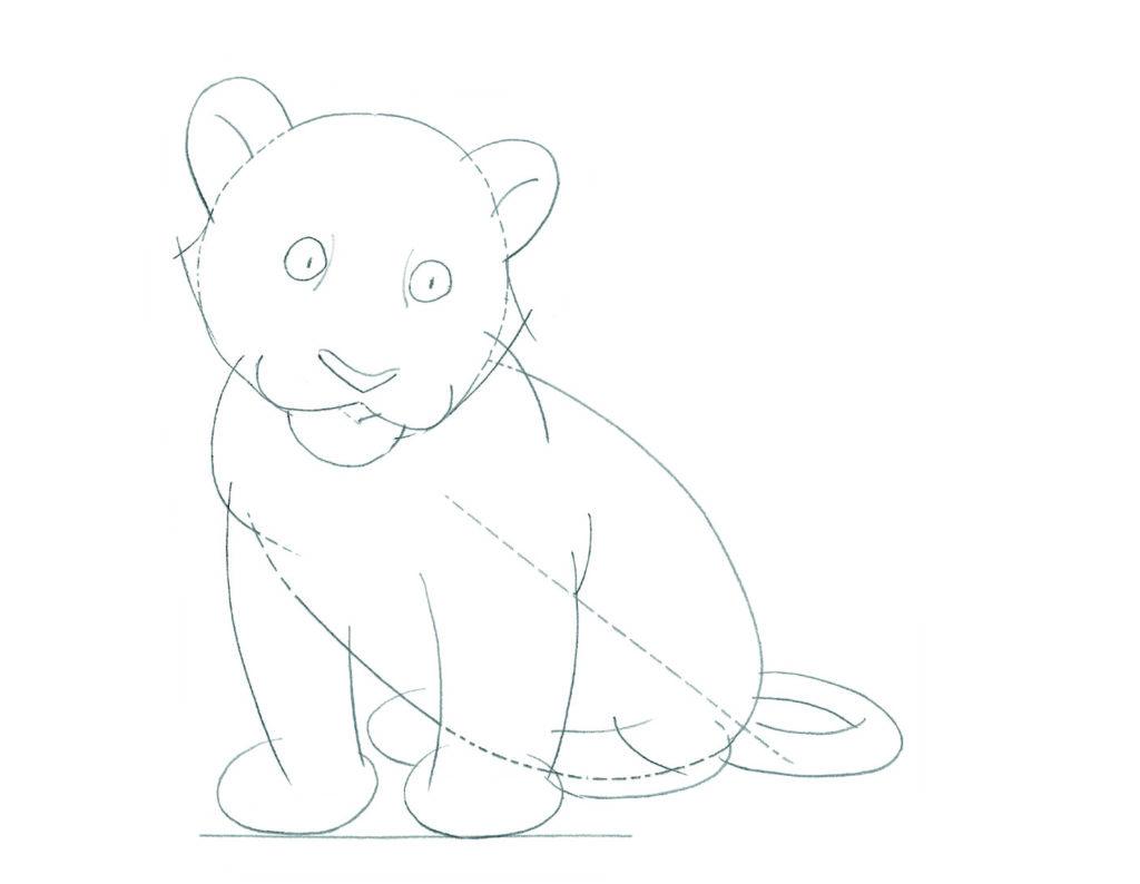 Realistic Beginner Husky Drawing