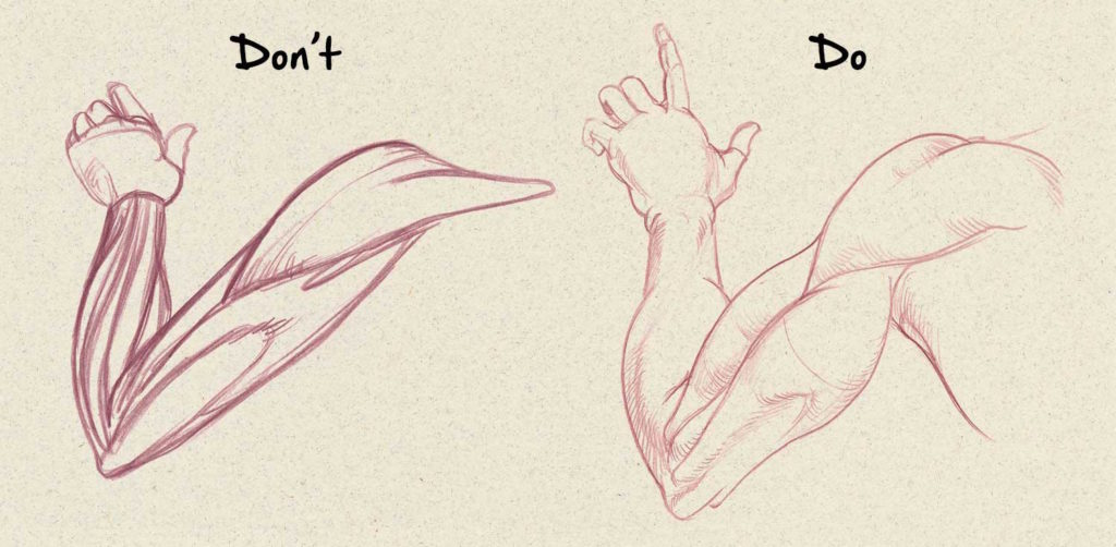 Muscles | Drawing Anatomy for Beginners: Top 5 Dos and Don'ts by Jeff Mellem | Artists Network