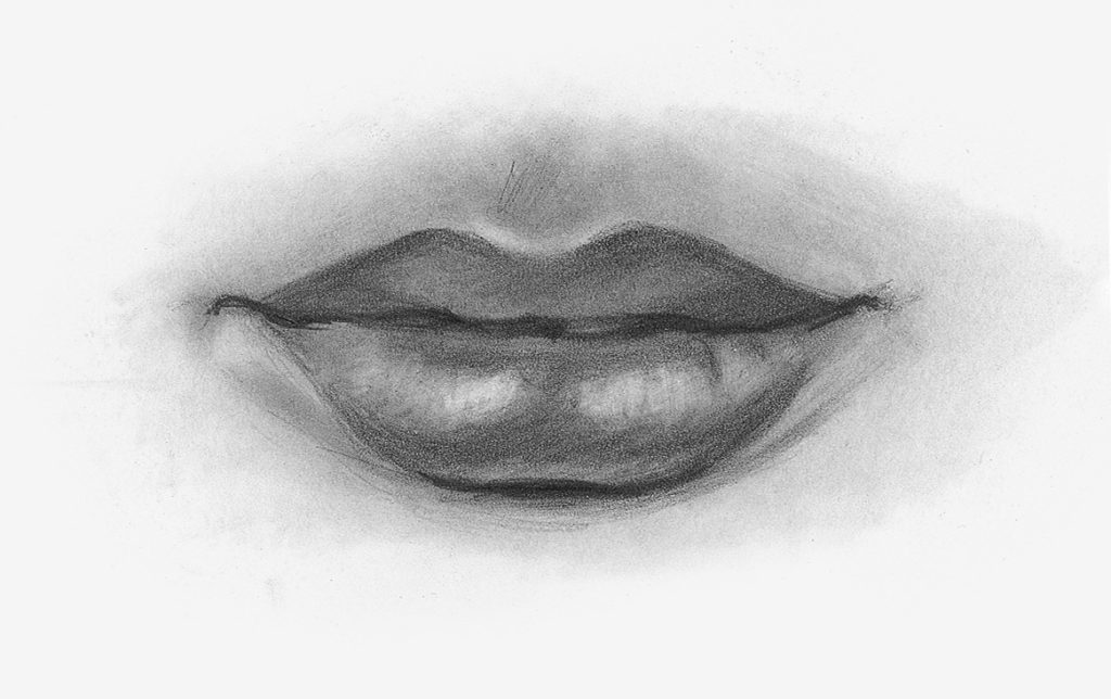Draw Facial Features With This In Depth Beginner S Guide