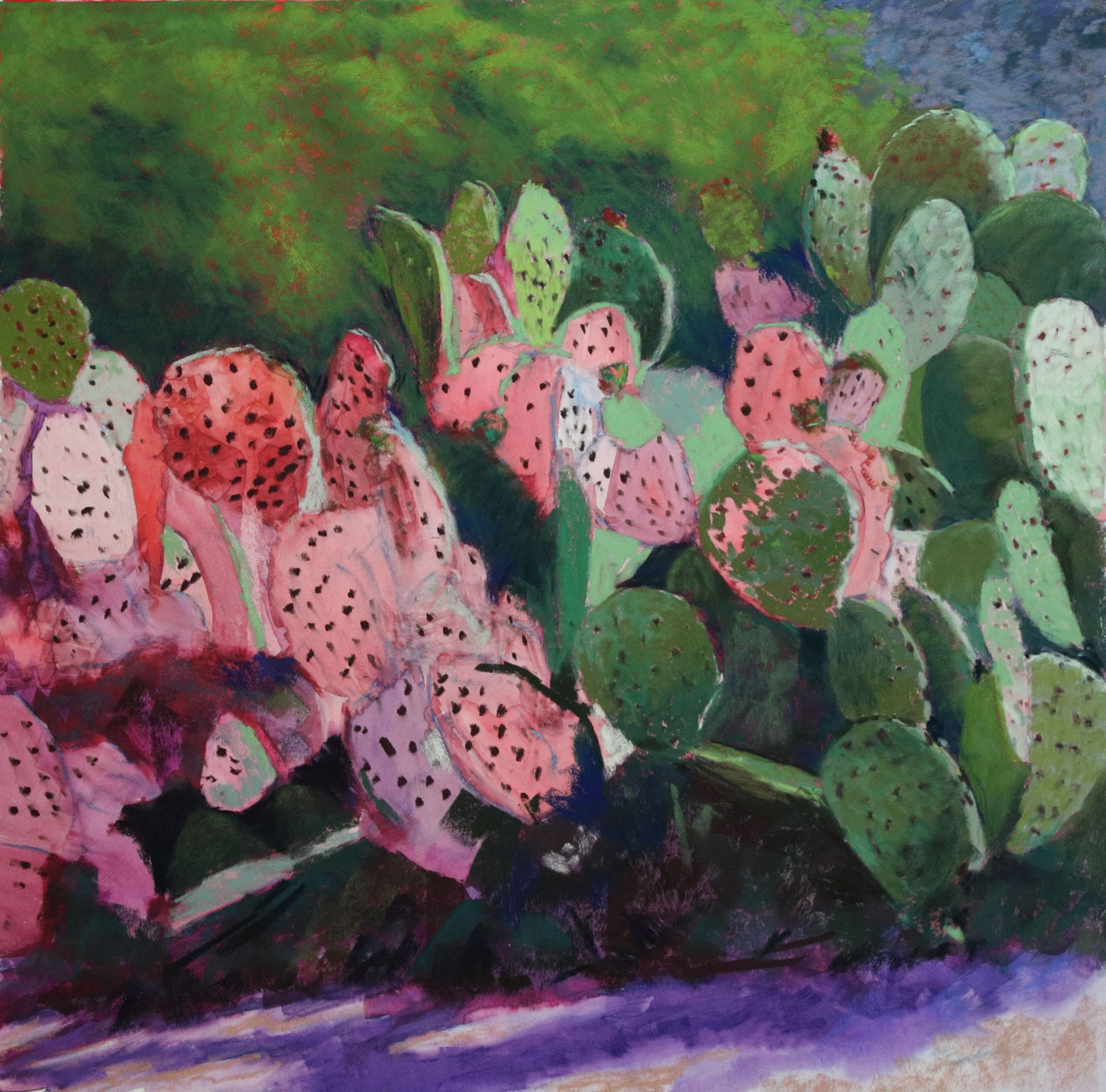 Cactus Painting Demo In Pastels Brings The Prickles Of The West To You