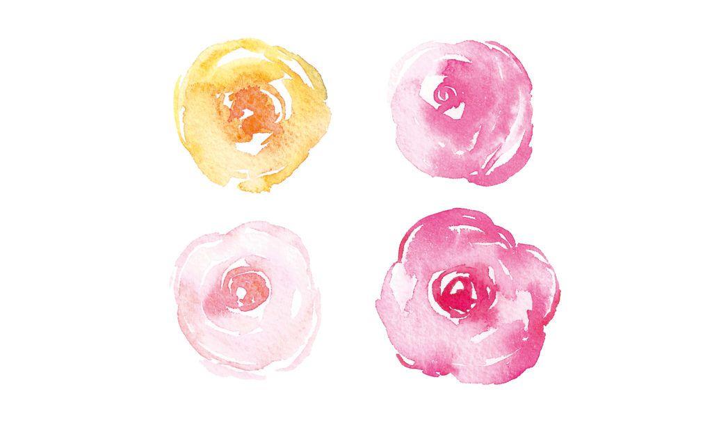 Простые акварельные цветы - розы от marie boudon