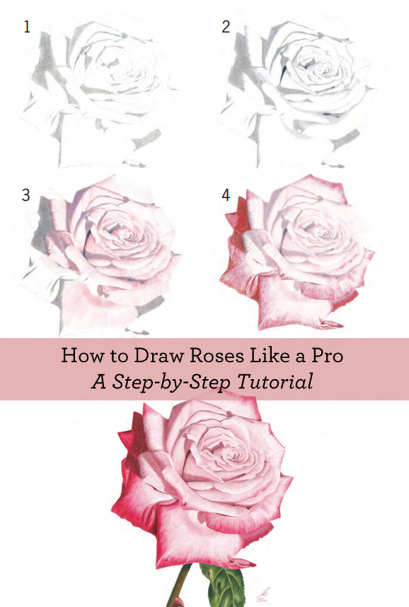Step By Step How To Draw A Flower